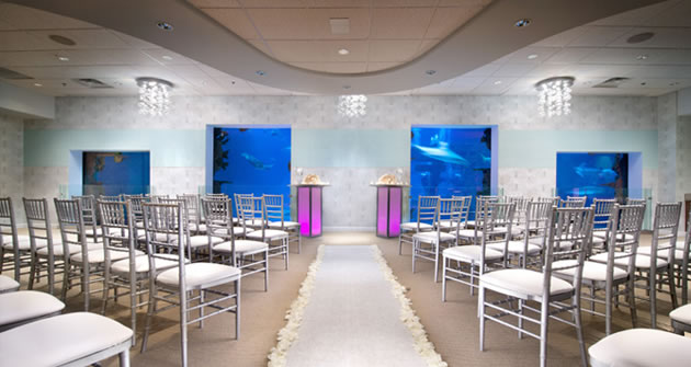 Login to weddings by mandalay bay congratulations on your engagement and welcome to your exclusive online wedding planning website you will be using this site to select all details junglespirit Gallery